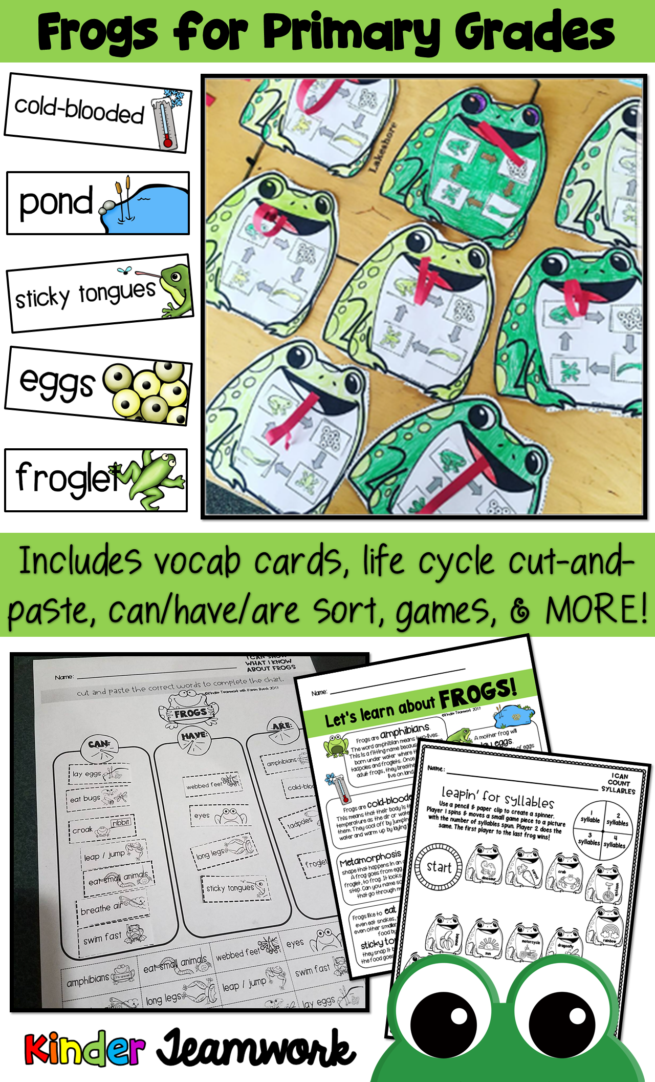 Frog Life Cycle and More for Primary Grades (Kindergarten and First ...