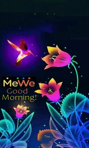 (99+)MeWe Sieć społecznościowa następnej generacji