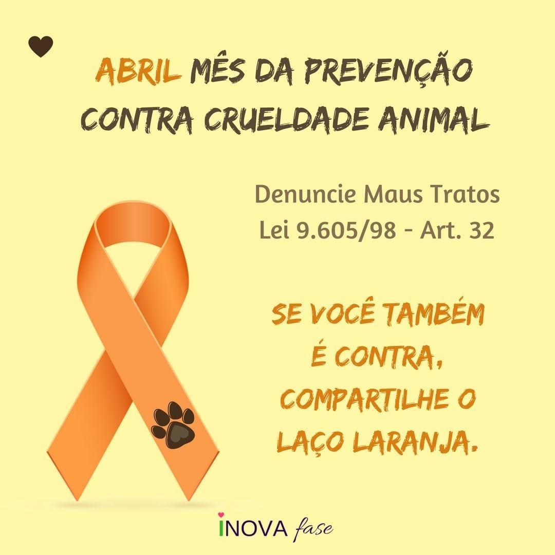 Abril Mes De Prevencao Contra Crueldade Animal Denuncie