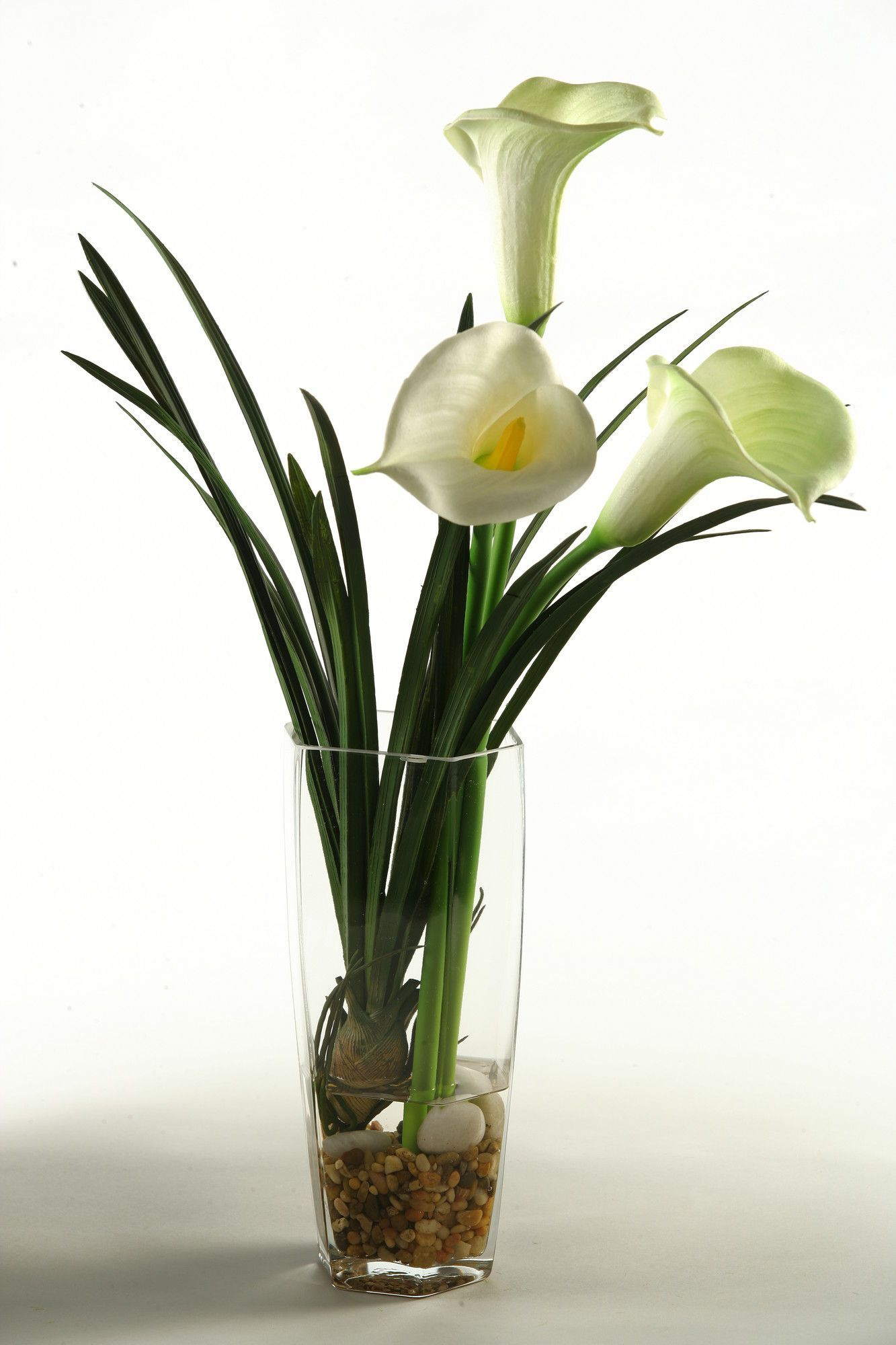 Calla lilies in glass vase calla lilies and products calla lilies in glass vase reviewsmspy