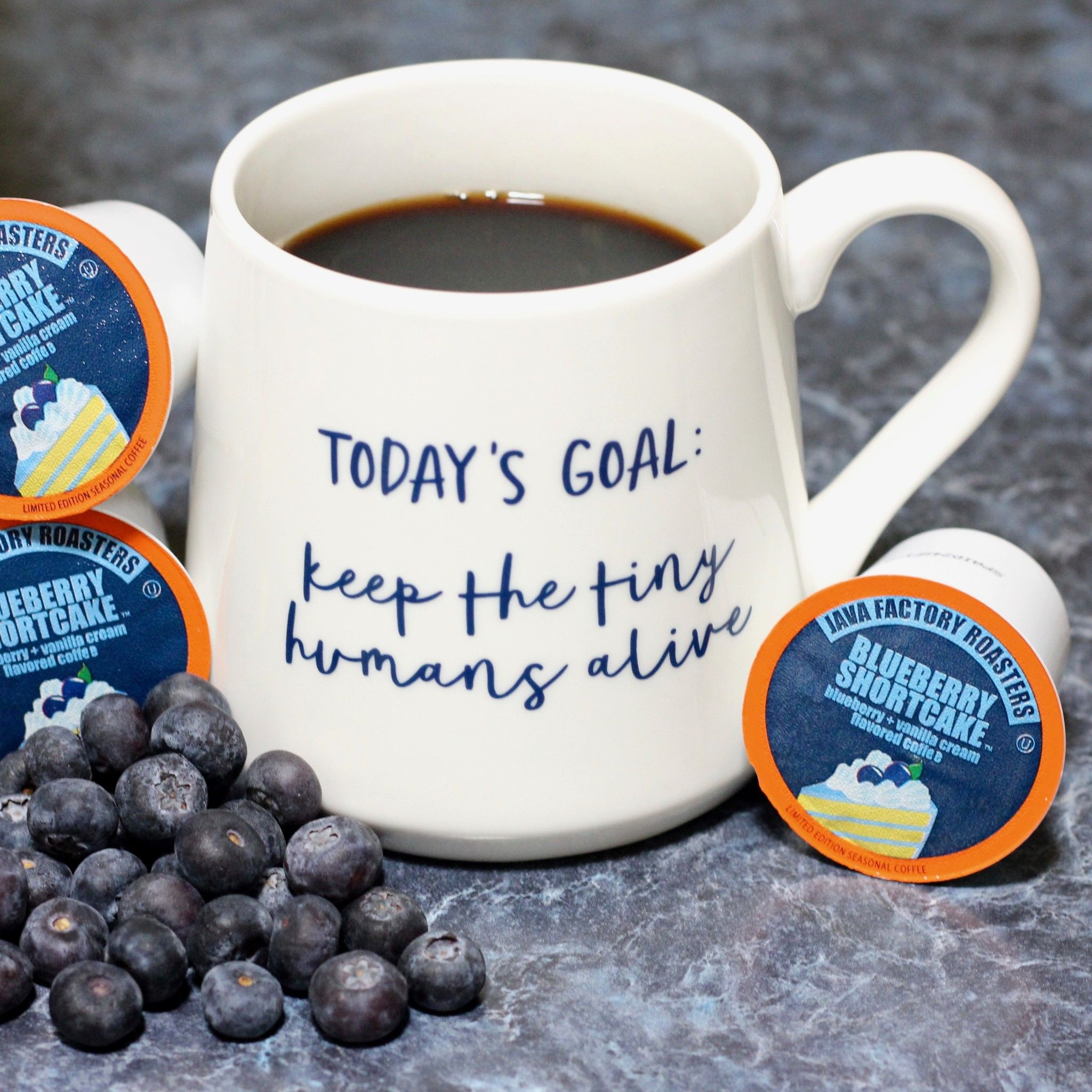 Java Factory Blueberry Shortcake Coffee Review Giveaway