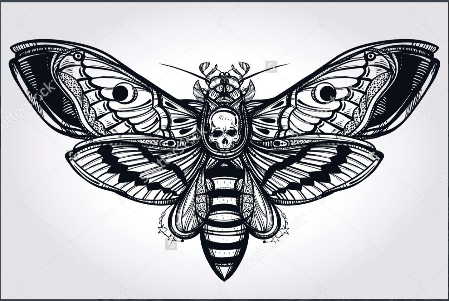 Death head moth wings disc golf designs pinterest for Disc golf tattoos