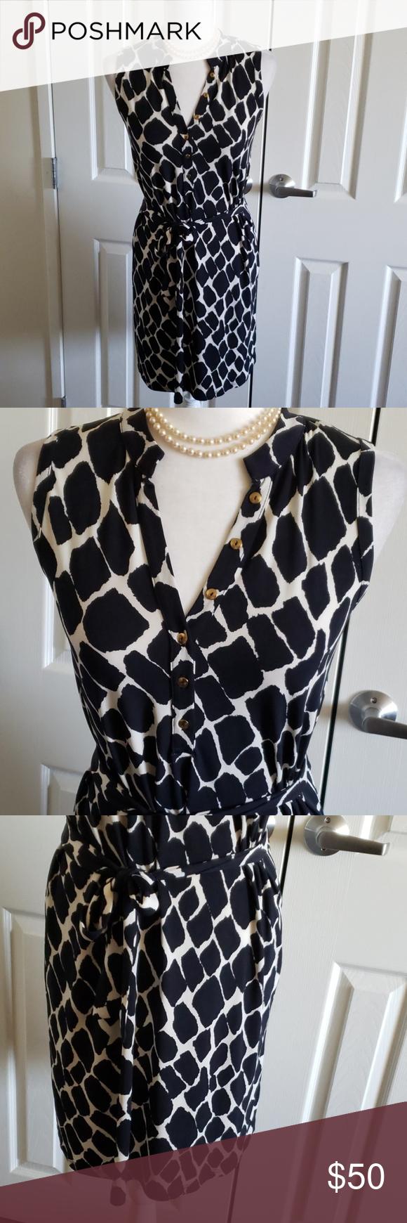 Daniel Cremieux Black White Dress W Gold Trim Xs White Dress Black White Dress Dresses [ 1740 x 580 Pixel ]