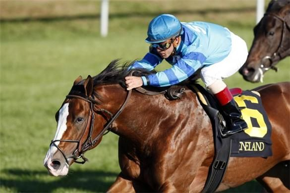 Nijinsky, a land mark for the British Thoroughbred horse racing