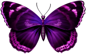 Ink Butterfly Wings Png Download Purple Butterfly Png Transparent Png Image With Transparent Background Png Free Png Images Purple Butterfly Tattoo Purple Butterfly Beautiful Butterflies