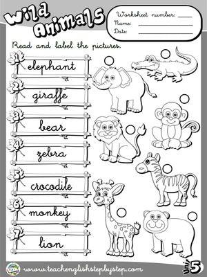 Wild animals worksheet    version animal worksheets activities vocabulary also english schule deutsch rh pinterest