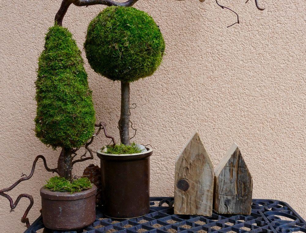 Bäume aus Moos - DIY | Dichter, Dünn und Mehrere