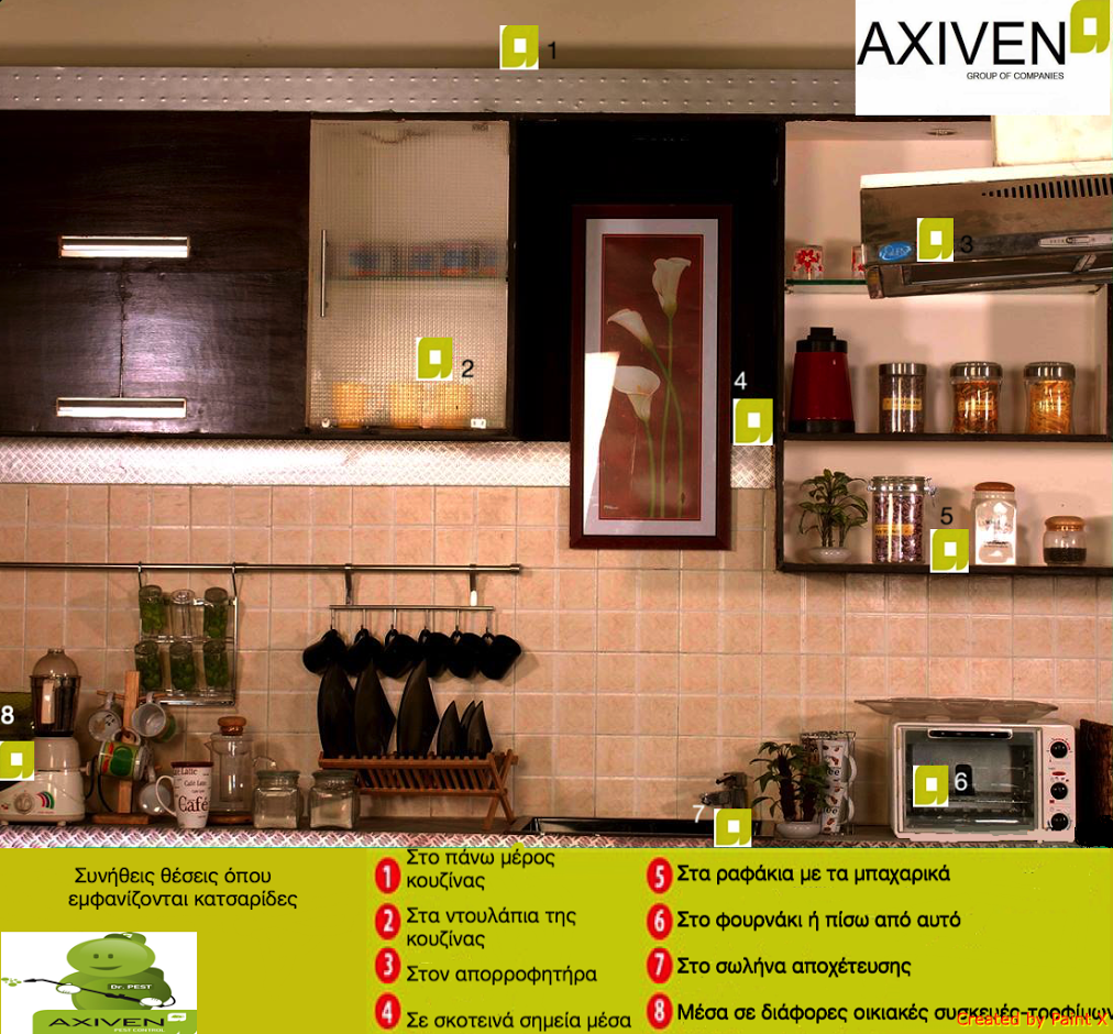 AXIVEN GROUP Pest ControlΑπολυμαντική http//www.axiven