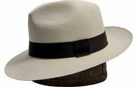 """Résultat de recherche d'images pour """"HATS"""""""
