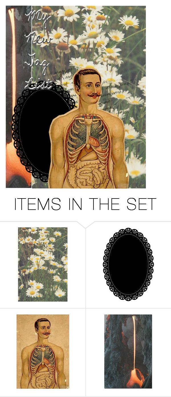 """// Tag list, Read the D. //"" by red-foxess-and-wolf ❤ liked on Polyvore featuring art"