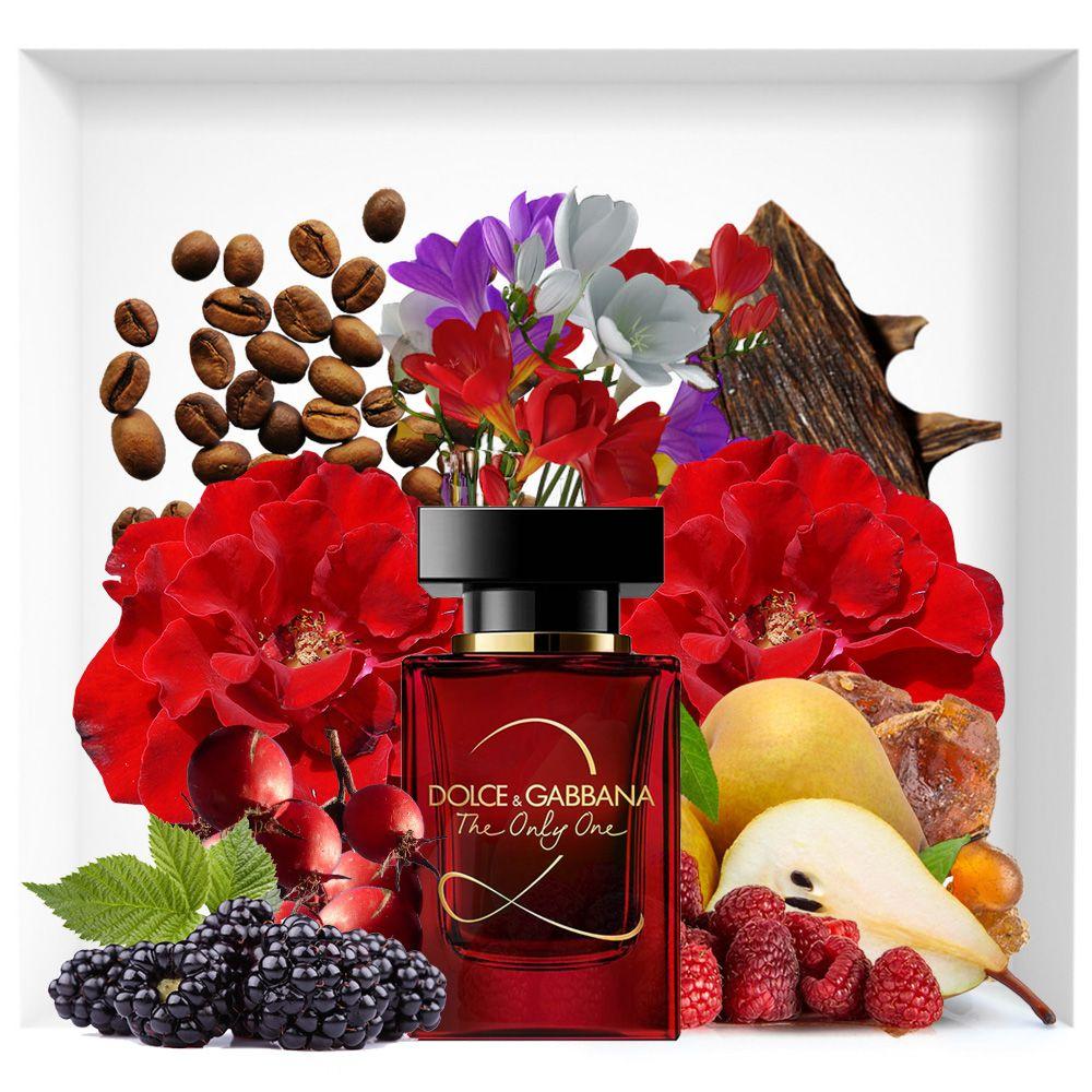 The Only One 2 Dolce Gabbana Eau De Parfum Fragrance Dolce And Gabbana Perfume Fragrances Perfume