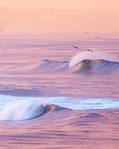 pink- pink-pink waves