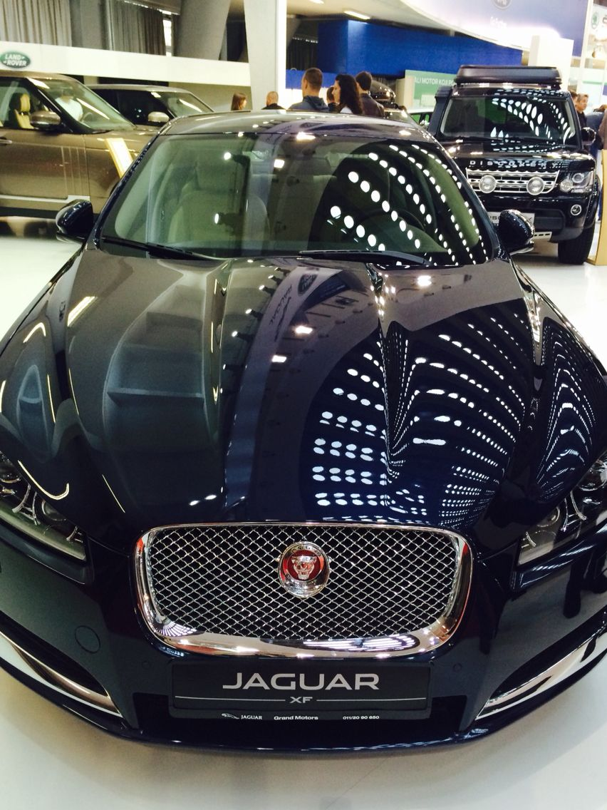 Jaguar With Images Jaguar Car Jaguar Xf Jaguar Car Logo