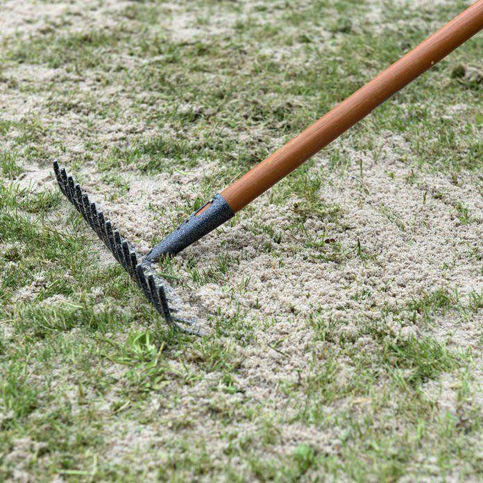 Moos Dauerhaft Entfernen So Wird Ihr Rasen Wieder Schon Garten Moos Entfernen Bepflanzung