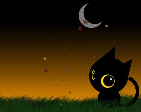 Simple Cat Big Eyes Cat Art Halloween Wallpaper Cute Wallpaper Backgrounds