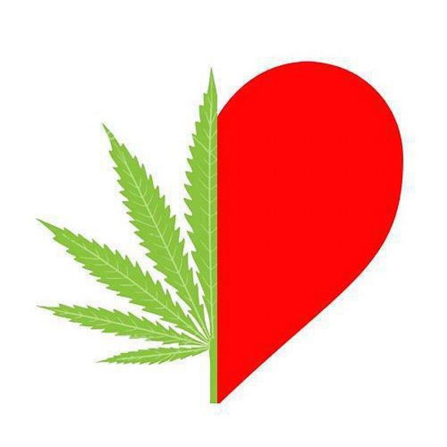 Cannabis como medicamento: 8 de sus beneficios medicinales - http://growlandia.com/marihuana/cannabis-como-medicamento-8-de-sus-beneficios-medicinales/