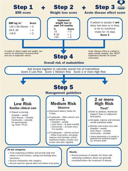 Malnutrition Risk Assessment  Mnt Practice Reference Sheets