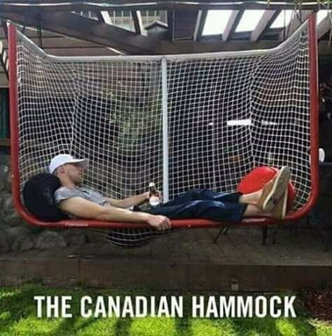 Photo of 40 Canadian Memes That'll Have You Poutine On Your Shoes To Go Right To Tim Horton's