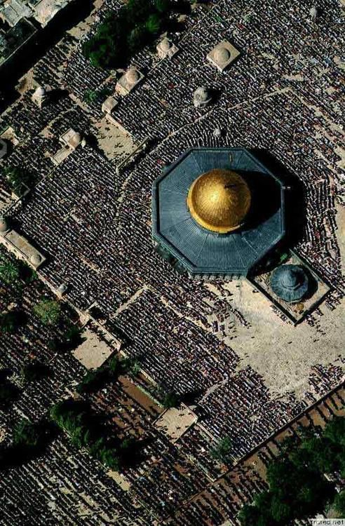 """AL-AQSHA mosque (""""the Farthest Mosque"""") and Bayt al-Muqaddas, is the 3rd holiest site in Islam (after Makkah and Madina). Let all people around you know that the al-Aqsa mosque and AS-SAKHRA mosque (""""The Dome of The Rock"""") are NOT the same."""
