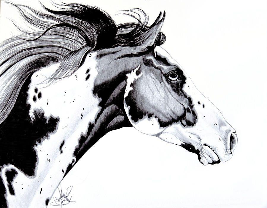 Horse Head Profile Dra...