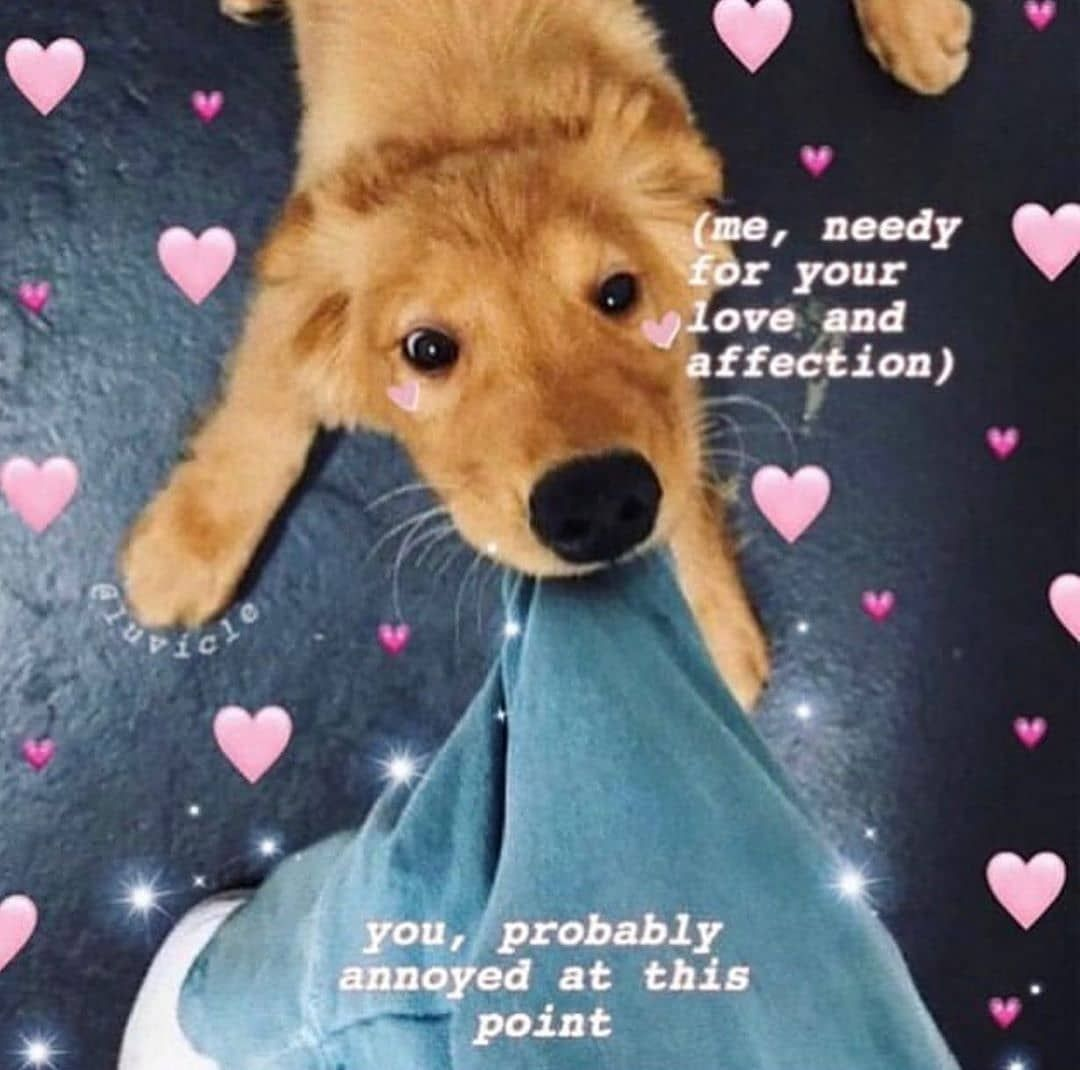 Good Night Sorry I Didn T Post Much Cute Love Memes Cute Memes Love You Meme