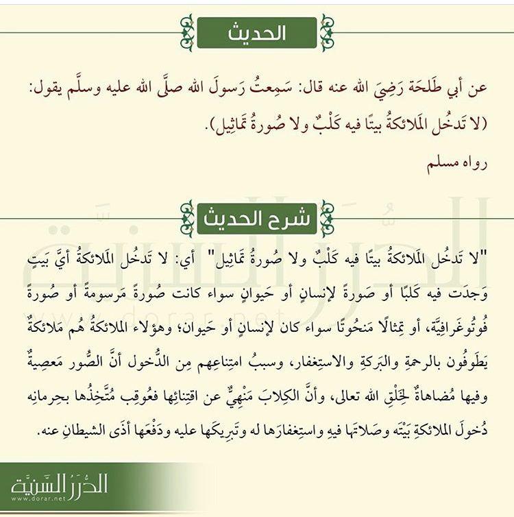 Pin By Sahar Yassine On Islam Learn Quran Learn Islam Listen To Quran
