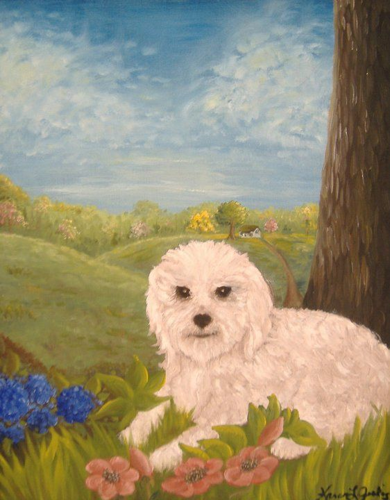 A portrait of my late Snowball