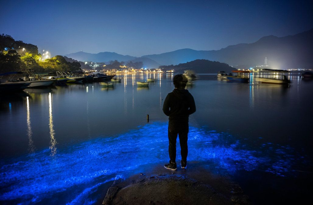The sight of the waters off Hong Kong these days can take your breath away -- but the haunting fluorescent blue seas can also be lethal to marine life.