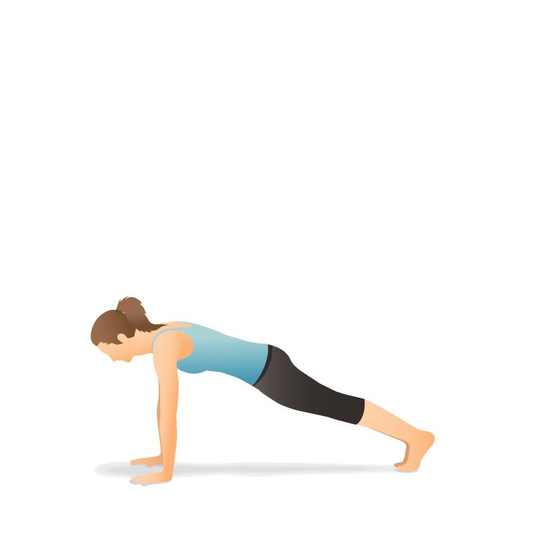 Yoga Pose Plank Phalakasana Yoga Poses Poses Yoga