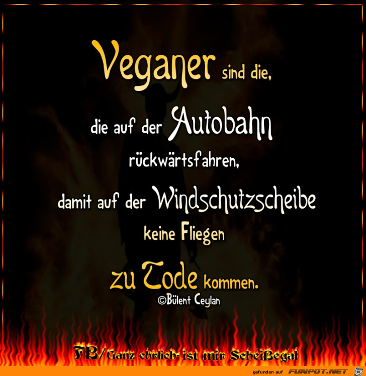 Veganer Humor Und Blode Spruche Funny Humor Und Jokes