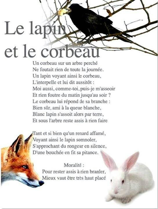 le lapin et le corbeau (fable)   Funny french, Humour ...