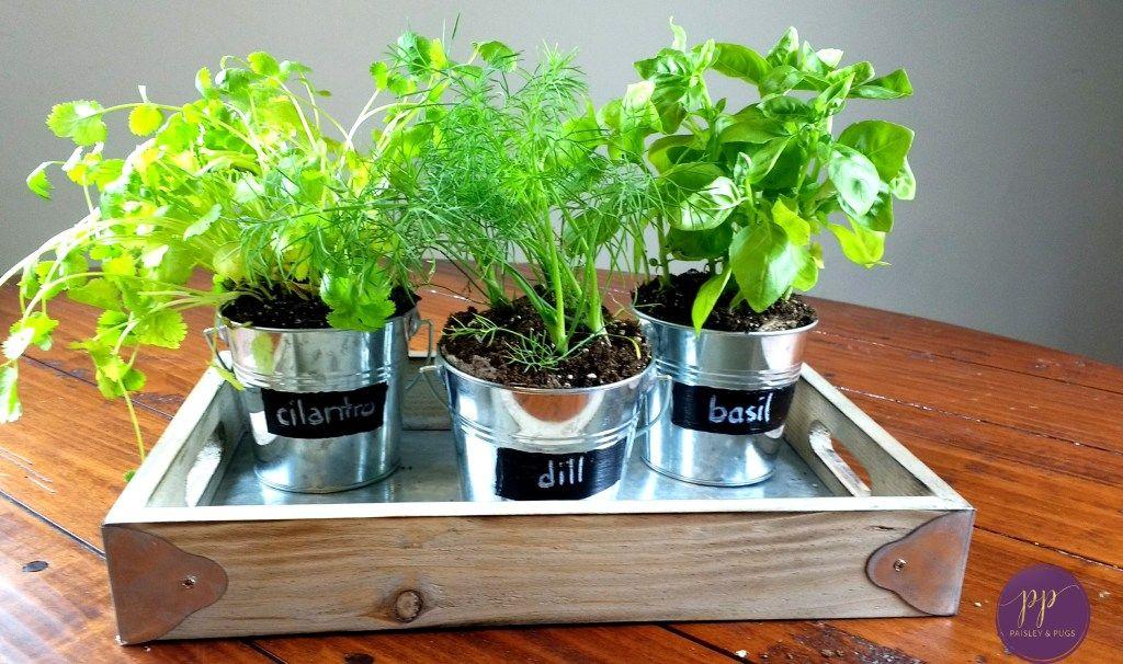 DIY Farmhouse Decor Indoor Galvanized Garden Planters