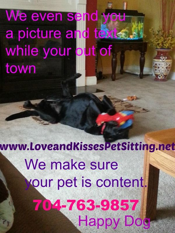 Love And Kisses Pet Sitting Is Your Professional Pet Sitter We
