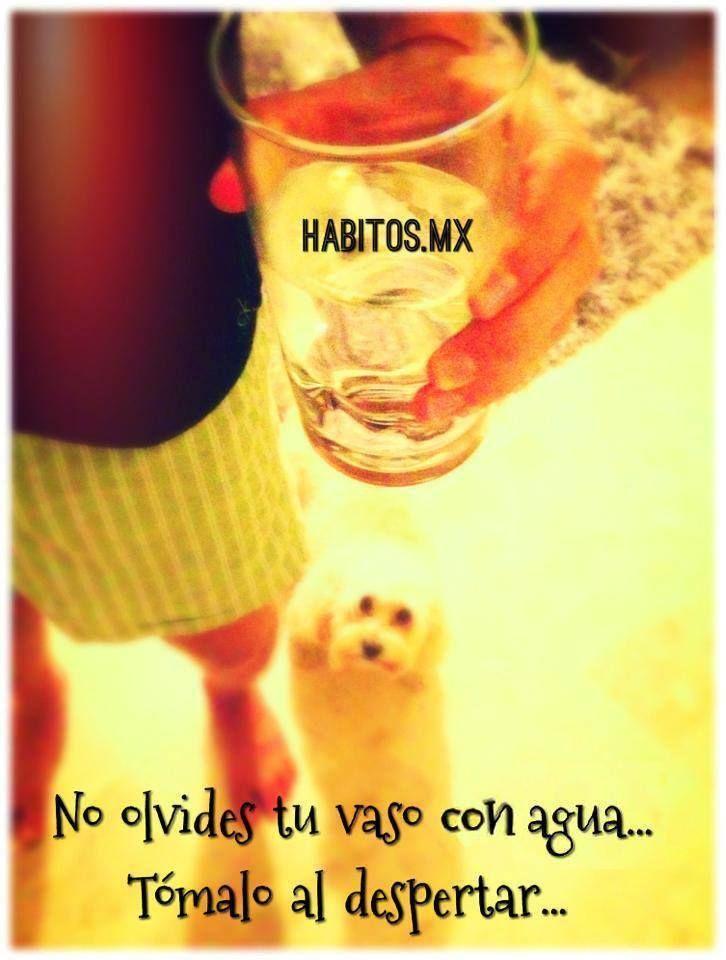 No olvides tu vaso con agua…