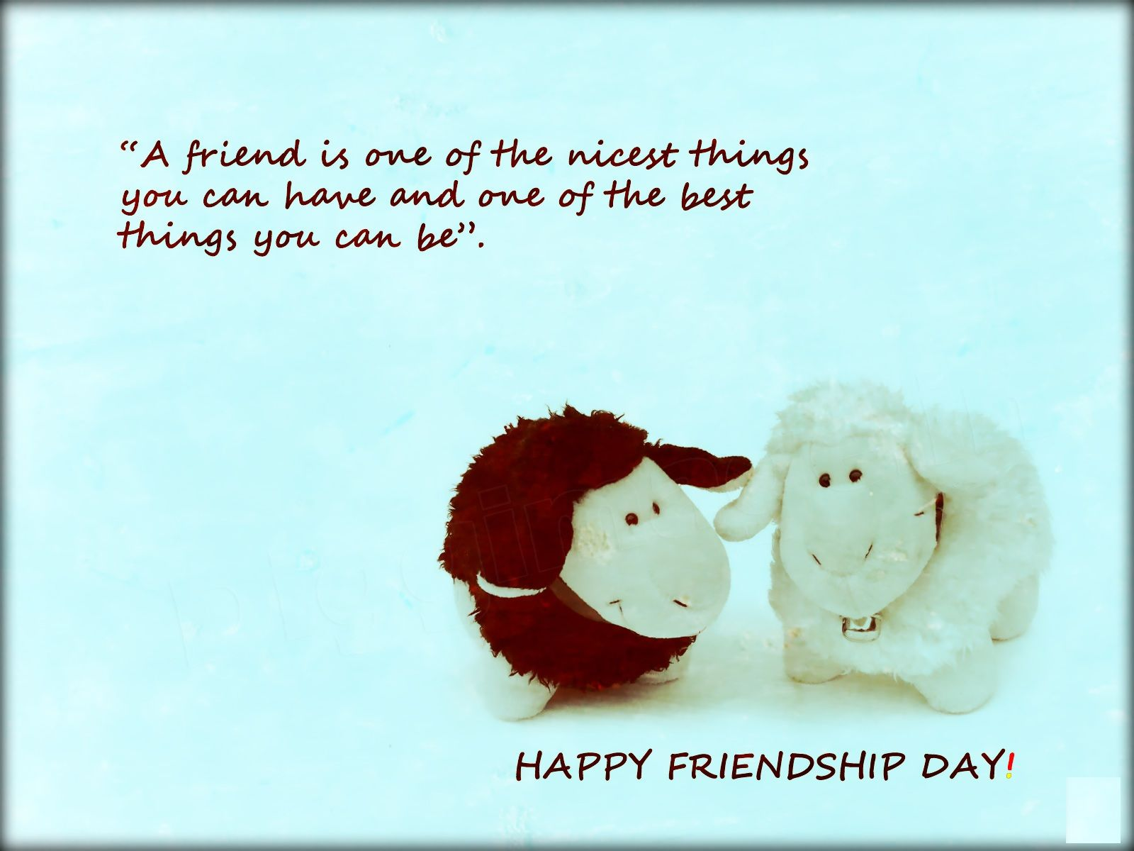 Cute Friendship Day Quotes  Happy friendship day, Friendship day