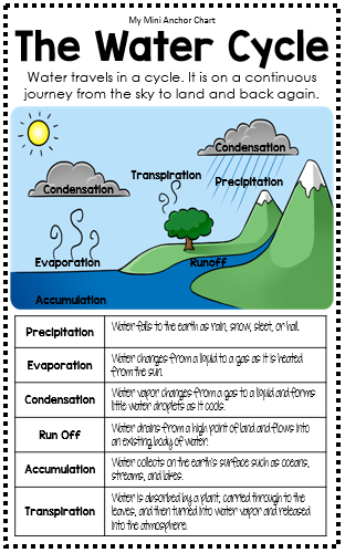 Science mini anchor charts anchor charts definitions and cycling homeschool the water cycle thecheapjerseys Images