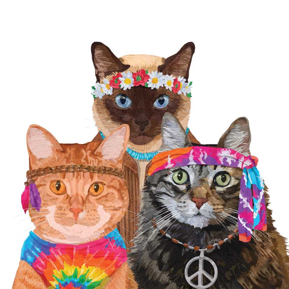 GROOVY CATS BEVERAGE NAPKINS Cat themed parties, Paper