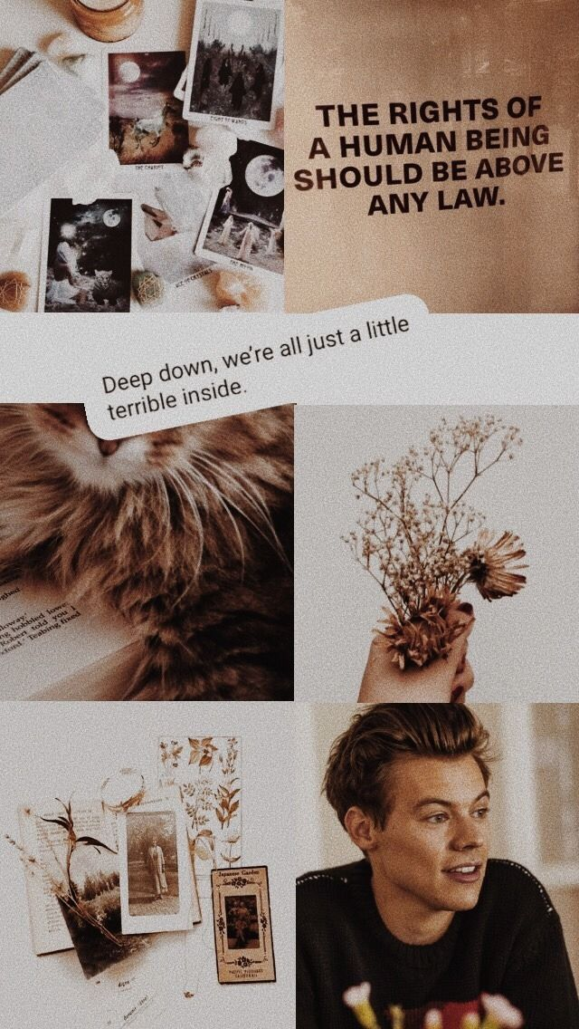 Wallpaper Tumblr Harry Styles Wallpaper Harry Styles Photos Harry Styles Pictures