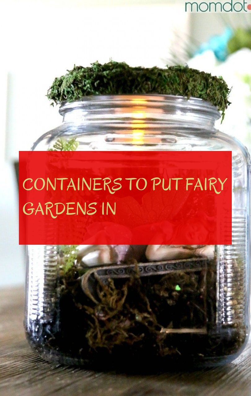 containers to put fairy gardens in