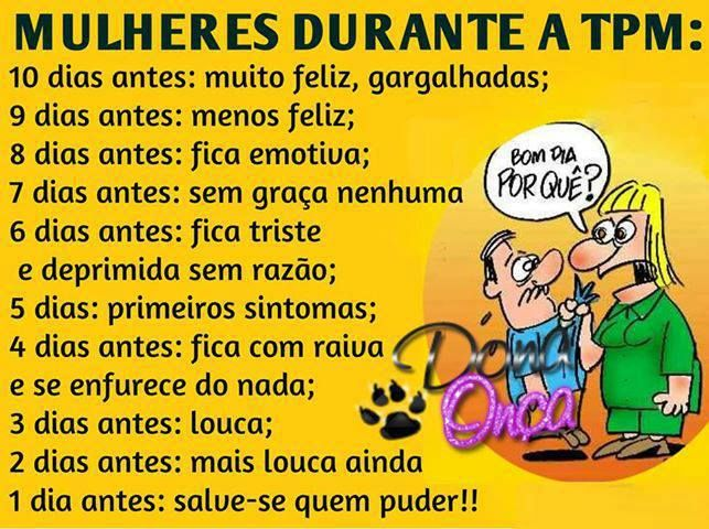 Mulheres Durante A Tpm Humor Humor Funny E Frases