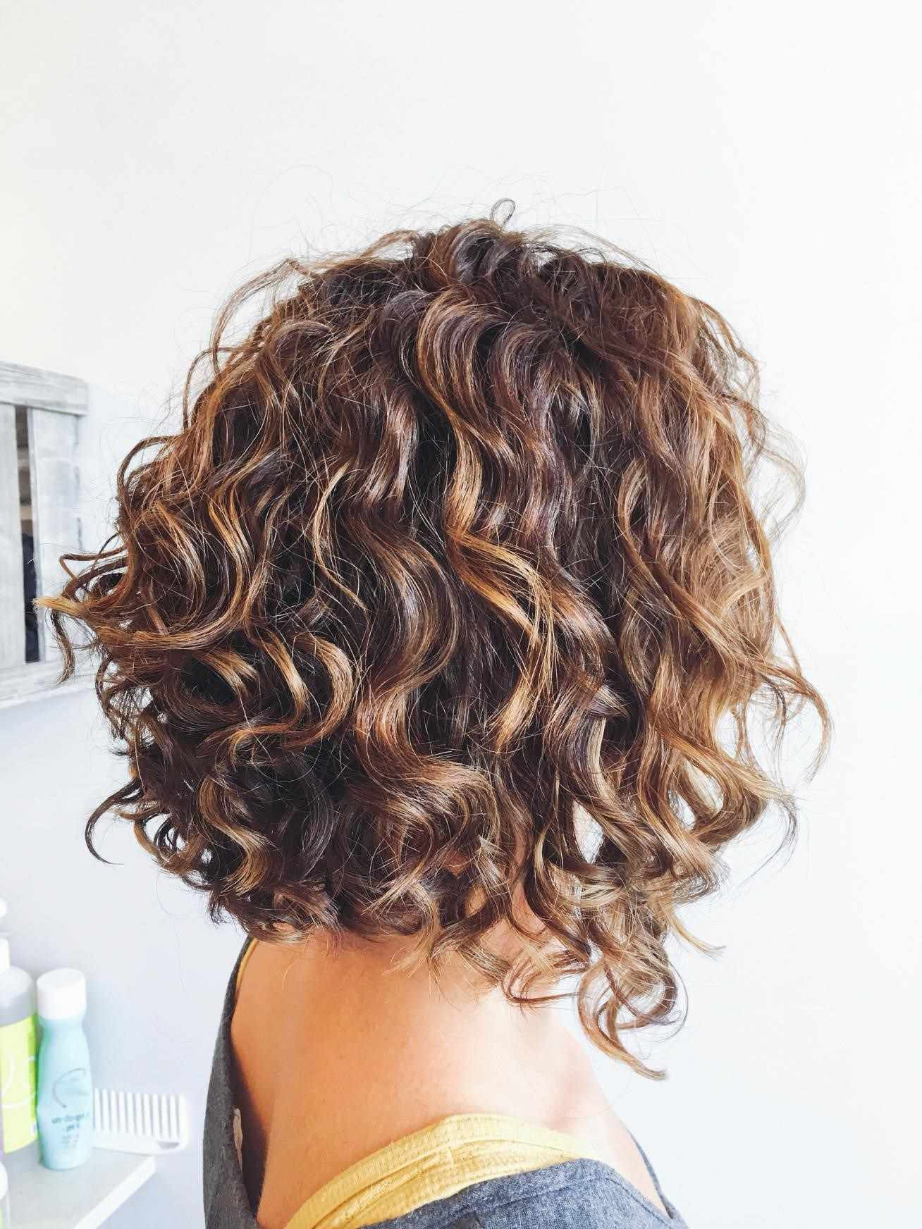 Image Result For Curly Angled Bob Short Permed Hair Curly Hair Styles Haircuts For Curly Hair