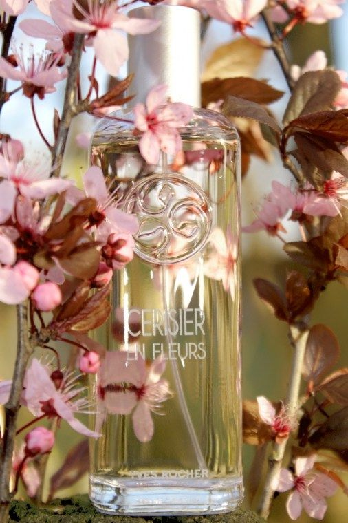 Un Matin Au Jardin Cerisier En Fleurs Is A Perfume By Yves