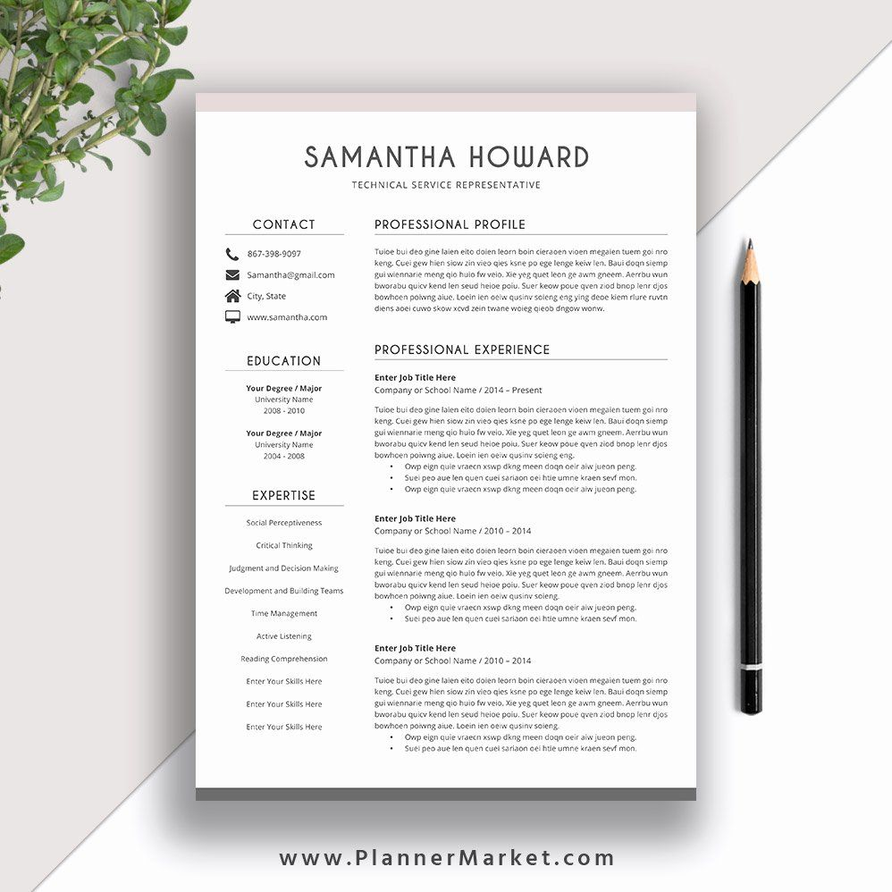Modern Resume Template Word Best Of Clean Resume Template
