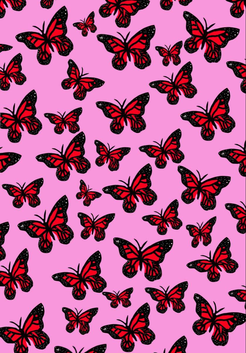 Butterfly Wallpaper In 2020 Butterfly Wallpaper Butterfly Wallpaper Iphone Iphone Wallpaper Vintage