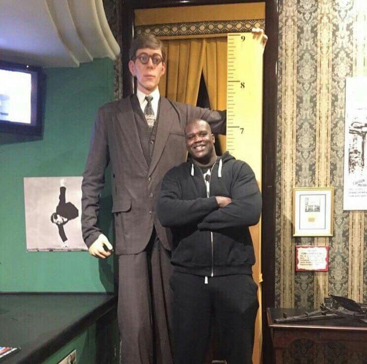 Awesome Photo Of Shaq Standing Next To A Wax Figure Of Robert Wadlow