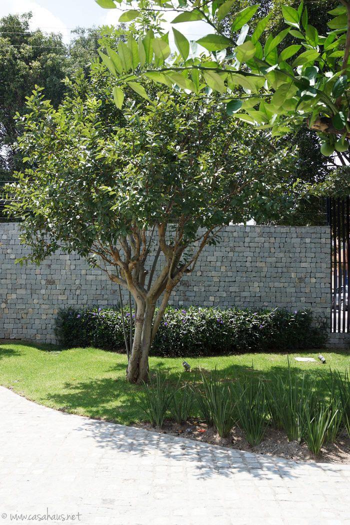 A gorgeous garden: modern landscape design / Un jardín bonito y moderno - Casa Haus Deco