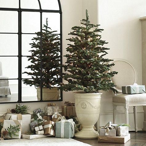 Toulon Christmas Tree Urn Ballard Designs Christmas Tree In Urn Unusual Christmas Trees Modern Christmas Tree