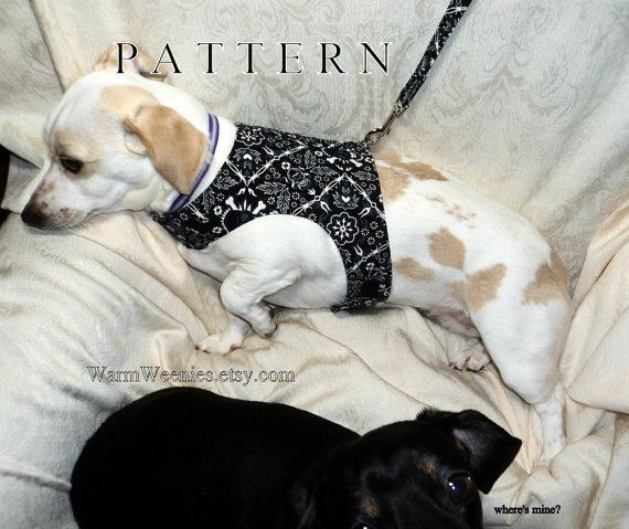 Dachshund small dog harness sewing pattern with leash instructions ...