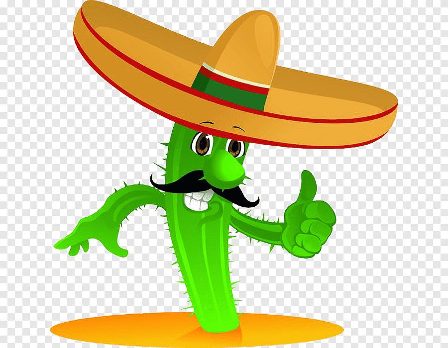 Cocina Mexicana Cactaceae Taco De Dibujos Animados Cactus Sombrero Fotografia Png Ilustracion De Cactus Hojas De Acuarela Dibujos