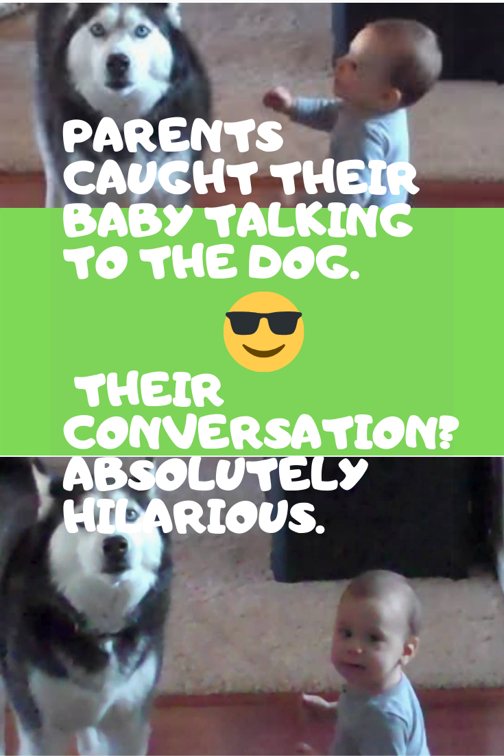 Parents Caught Their cute Baby Talking To The Dog. Their Conversation? Absolutely Hilarious.